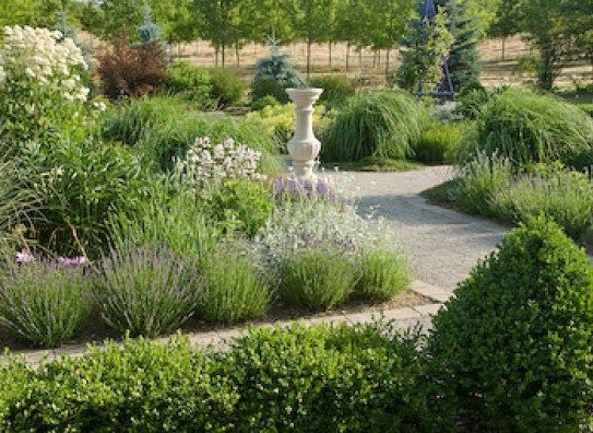 About Us - Garden Design, Maintenance  Care All London Areas (Hire - Garden Design Company