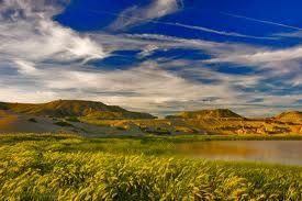 ... por su aridez extrema, pero también hay sitio para las charcas y lagunas, punto éste idóneo para fotografiar algunas especies de aves de la estepa.