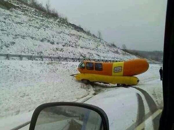 50% off hot dogs - today only