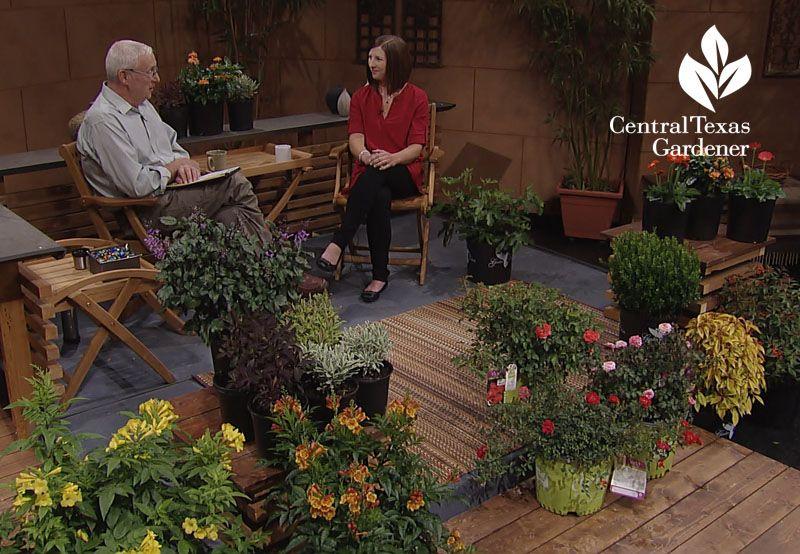 c2cc1aa68cf6a3d40196b88efcfe64a7 - Why Is Tom Spencer Not On Central Texas Gardener