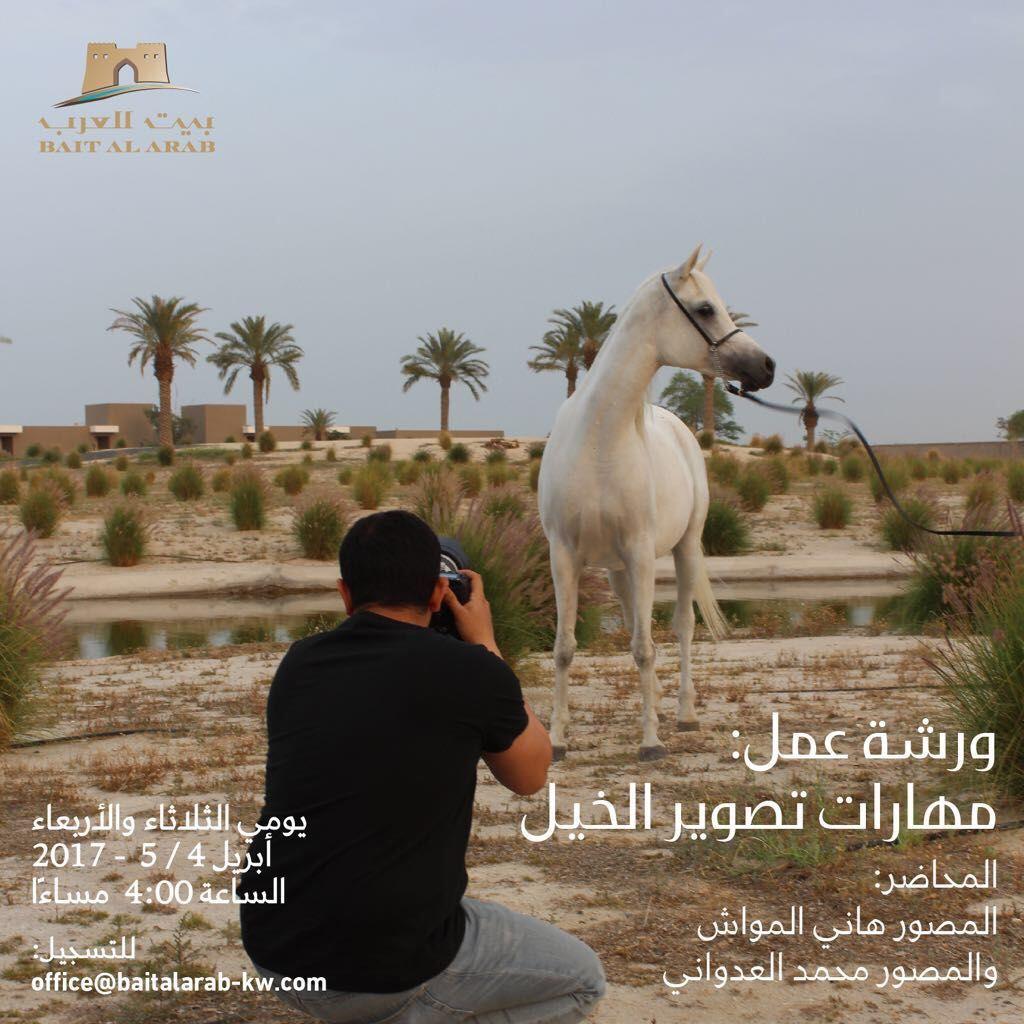 ورشة عمل بعنوان مهارات تصوير الخيل ينظمها بيت العرب بالكويت Arabian Horse Horses Animals