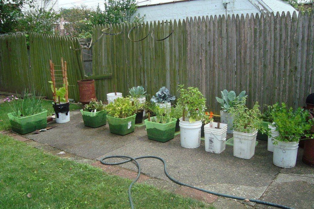 Designing Your Container Vegetable Garden Container Gardening