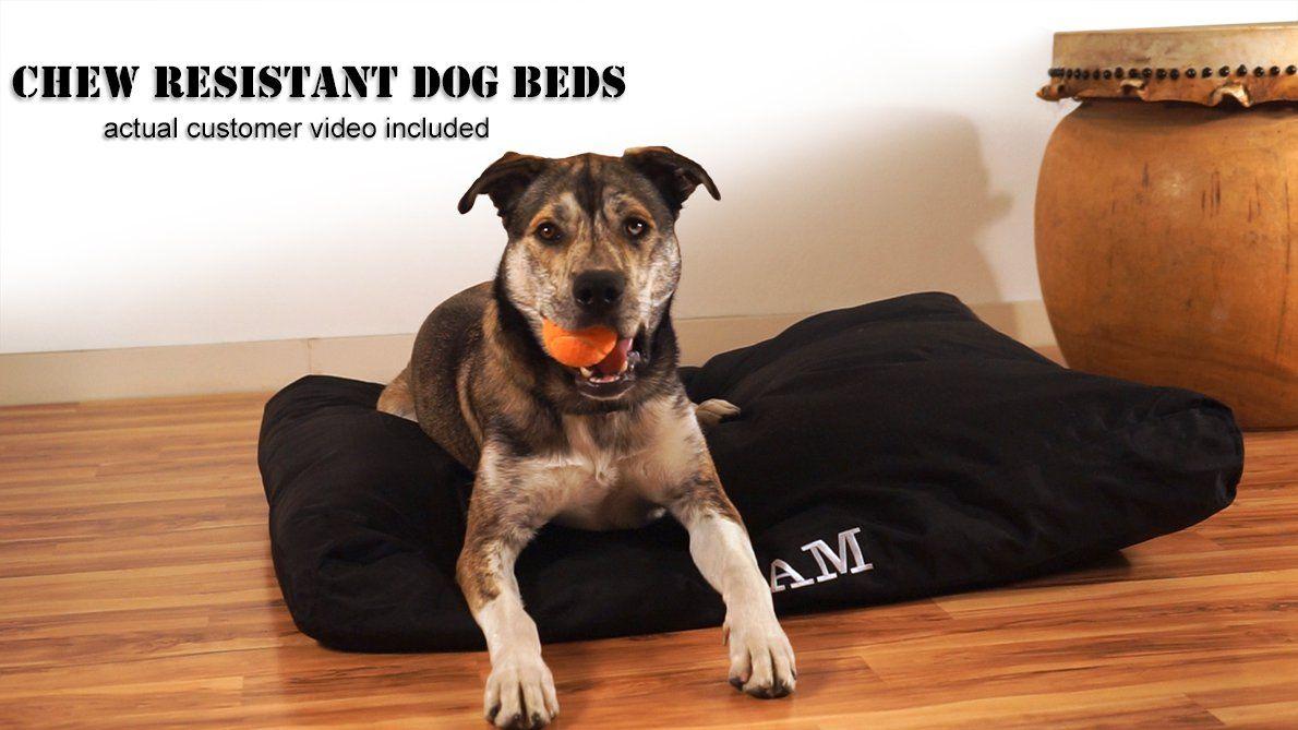 Chew Proof Dog Beds By K9 Ballistics Chew Proof Dog Bed Indestructable Dog Bed Tough Dog Beds