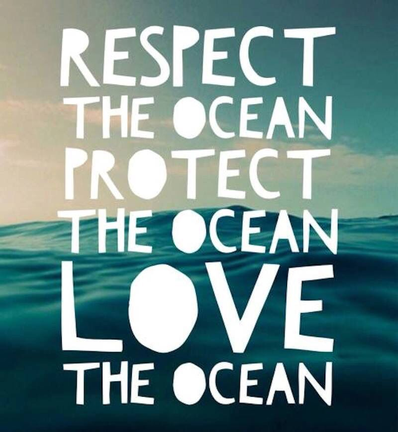 Respect, protect and love the ocean.