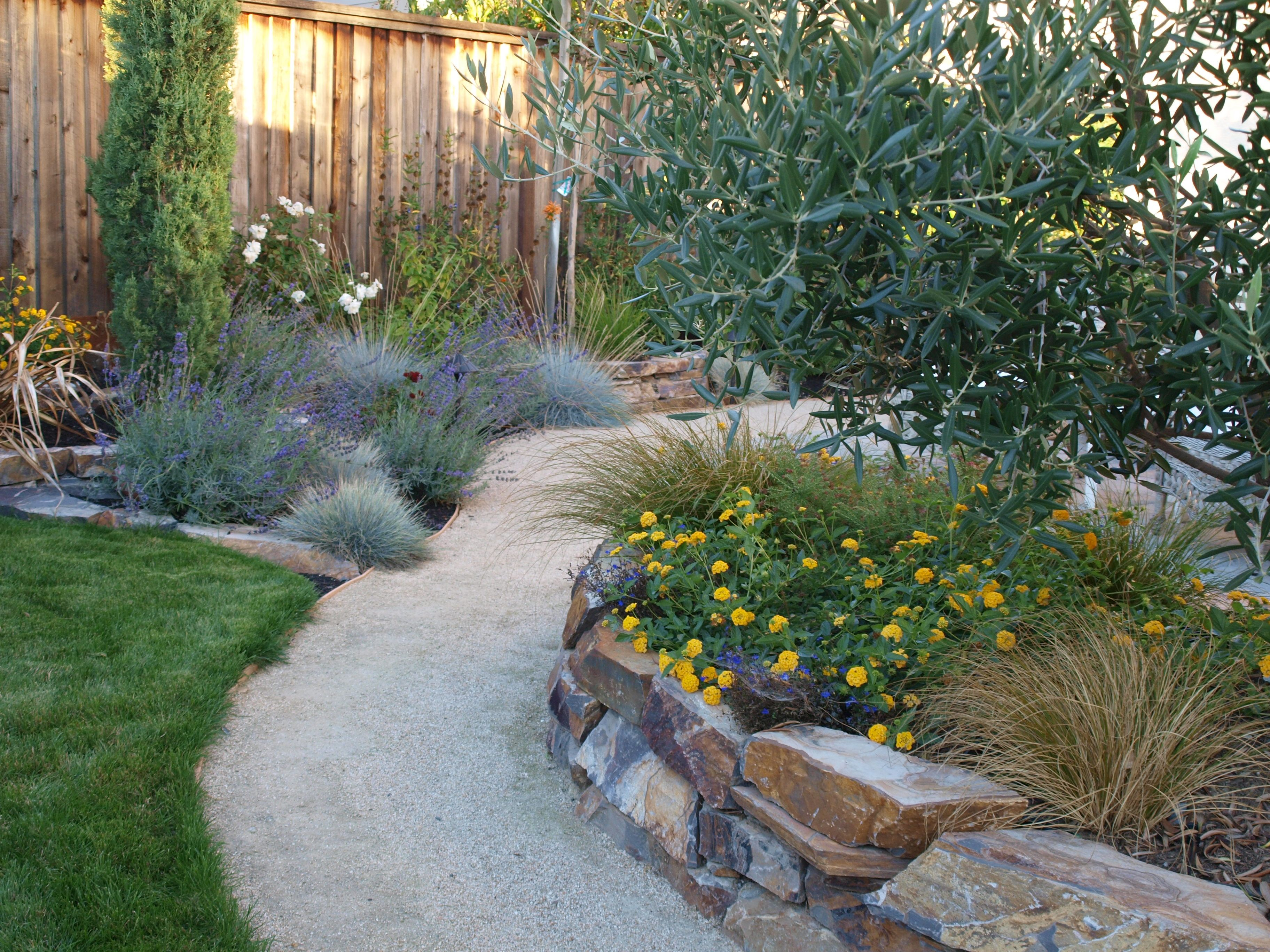 Decomposed Granite Pathway (With images) | Desert ... on Decomposed Granite Backyard Ideas id=47408
