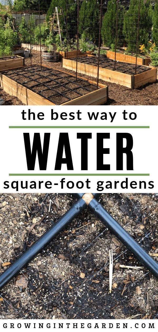 Best Way to Water RaisedBed Gardens Raised vegetable