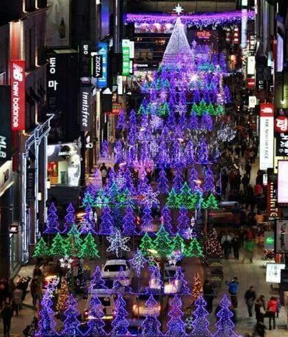 south korea busan christmas tree festival show me the. Black Bedroom Furniture Sets. Home Design Ideas