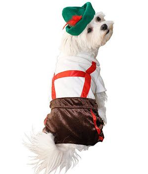 Lederhosen Dog Costume Lederhosen Cute Dog Costumes Dog