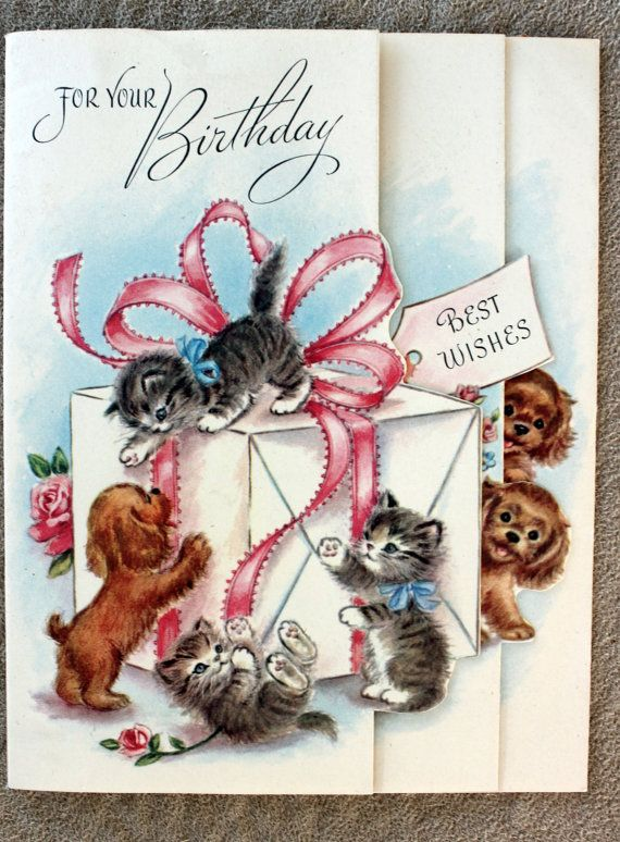 открытка сестре с котами счету мало видео