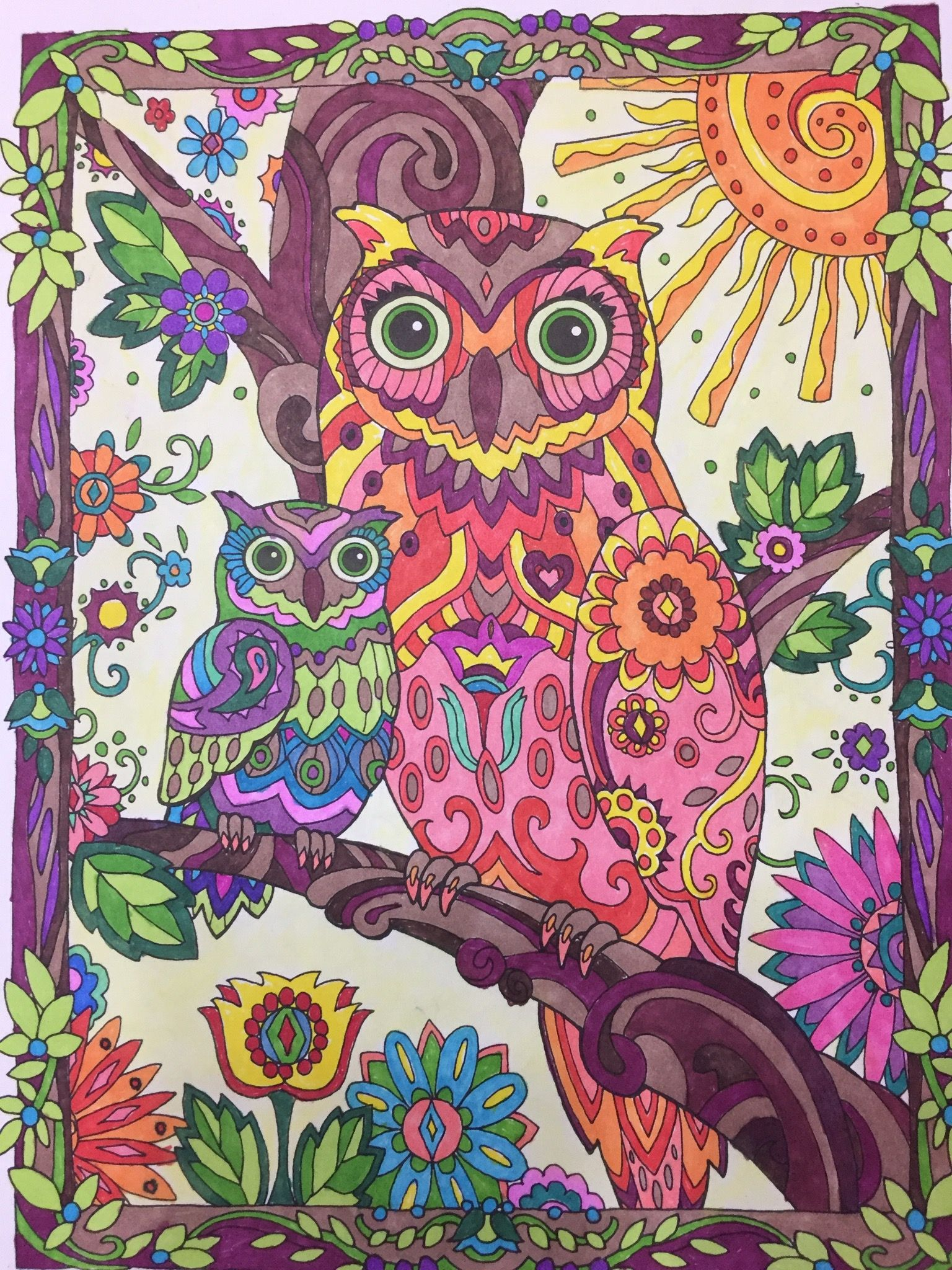 Owls Creative Haven Dover Publishing Prismacolor Markers Colored By Jan Owls Drawing Cat Coloring Book Owl Art
