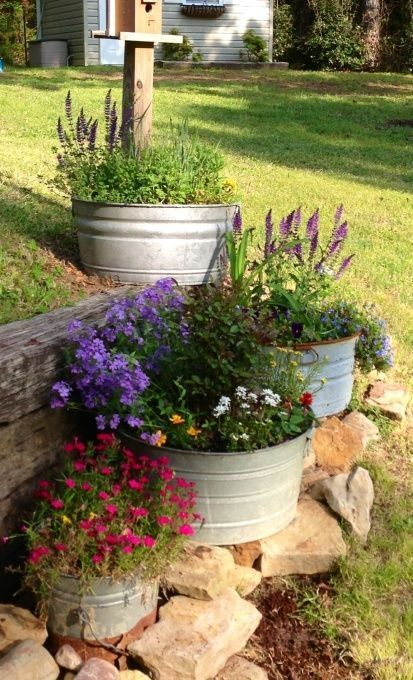 love these galvanized buckets for planters. by chelle