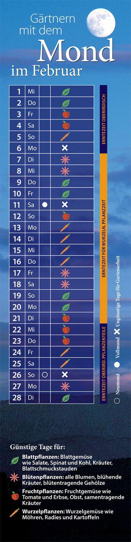 Www Gartenflora De Fileadmin Gaf Monats Tipps Mondkalender 2017 02 Mondkalender Jpg Mondkalender Mond Kalender