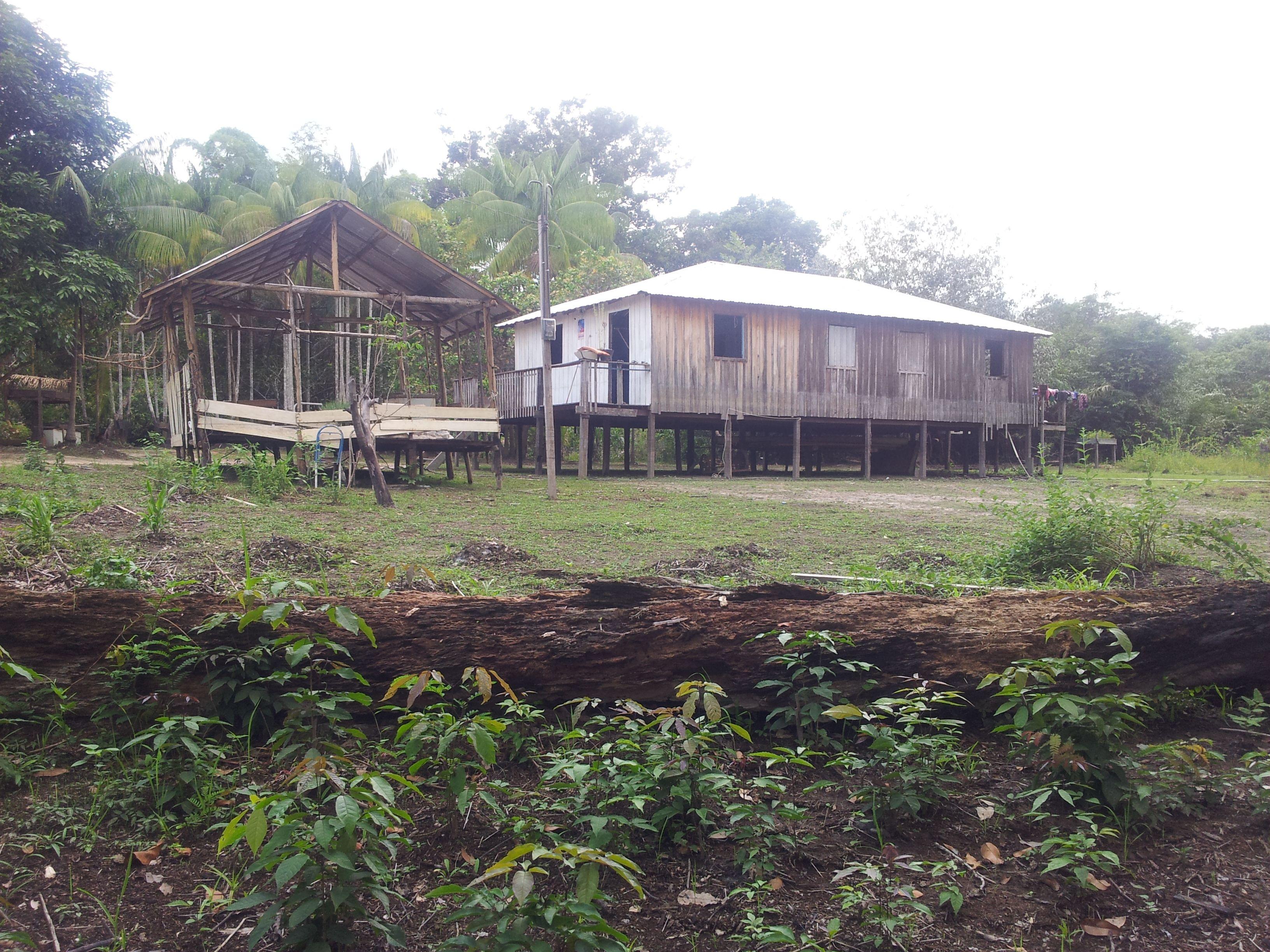 Vida de um caboclo na Amazônia!