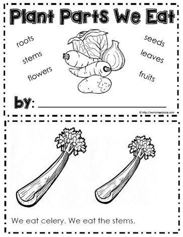 Booklet For Plants We Eat Plants Kindergarten Teaching Plants Plant Lessons Plants worksheets for kindergarten