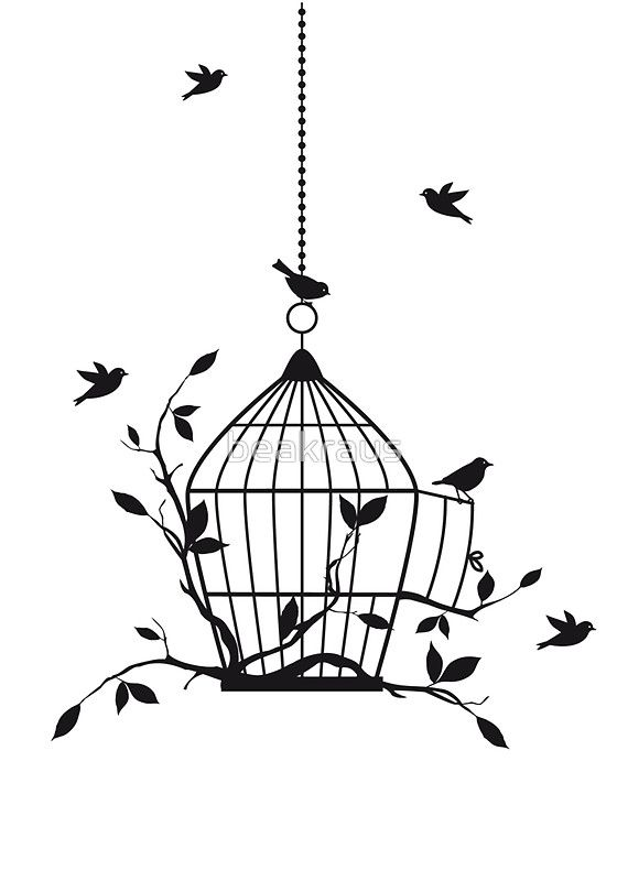 bird  cage  drawings  art  painting  ink  ideas