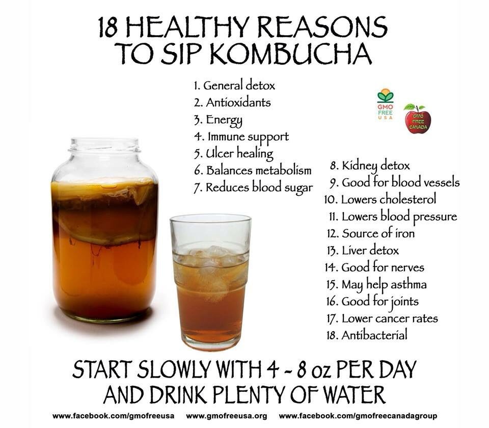 kombucha tea in 2019 | kombucha benefits, kombucha recipe
