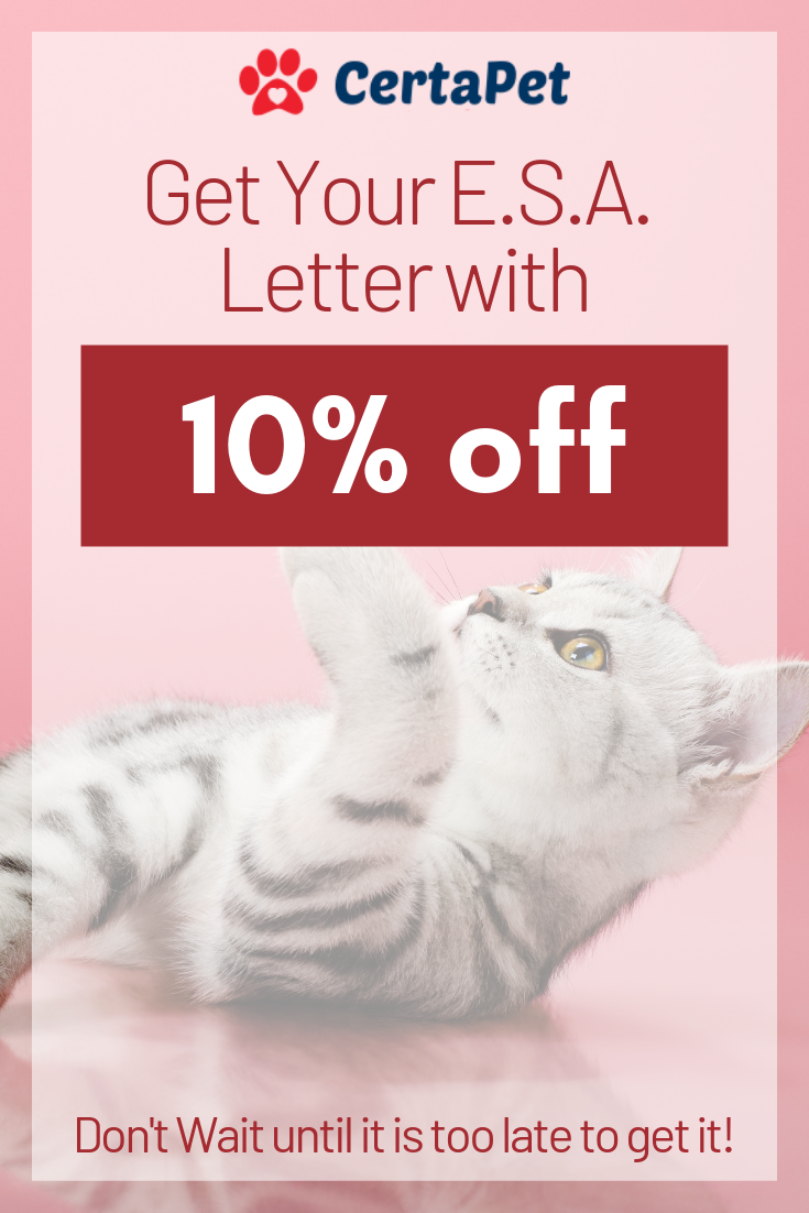 Get your emotional support animal letter today with a 10