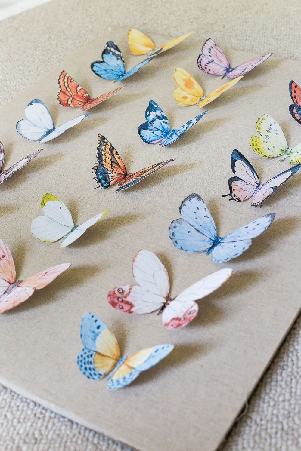 DIY Butterfly Study Shadow Box - Bless'er House