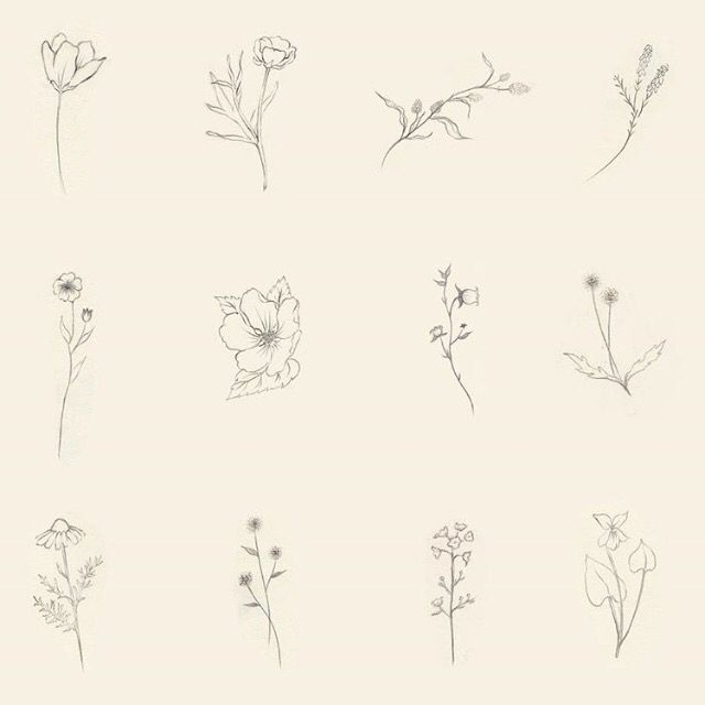 Image Result For Forget Me Not Tattoo Black And White Tattoo Ideen