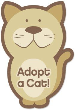 Adopt A Cat Or More Appropriately Let One Adopt You Cat Adoption Crazy Cats Adoption