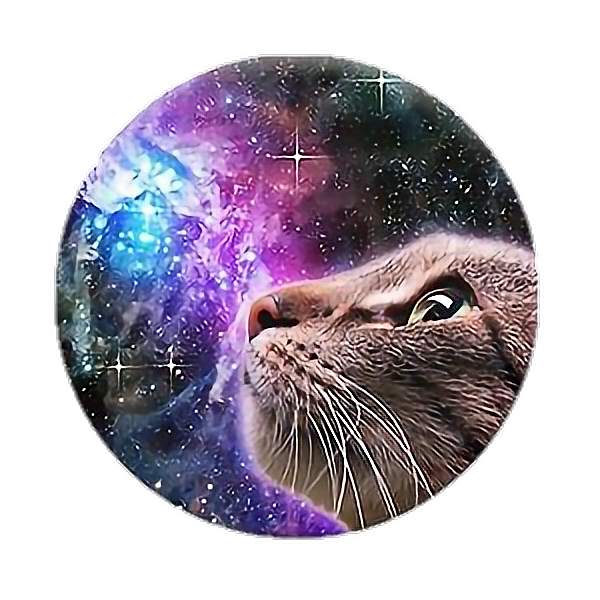 Pin By Tosh On Smudge In 2020 Popsockets Popsockets Phones Kittens
