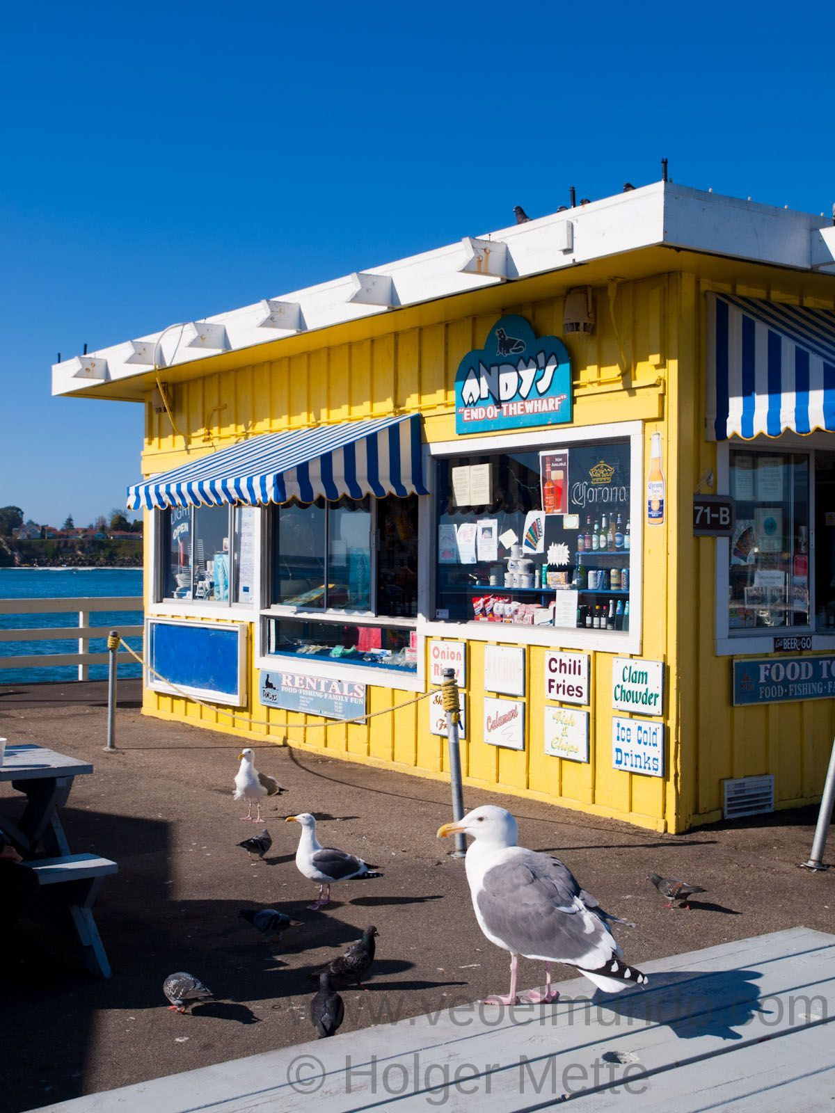 Andy S On The Pier In Santa Cruz Love Seafood And They Have Best Fries Too While You Wait For Your Food Can Be Entertained By Sea Lions