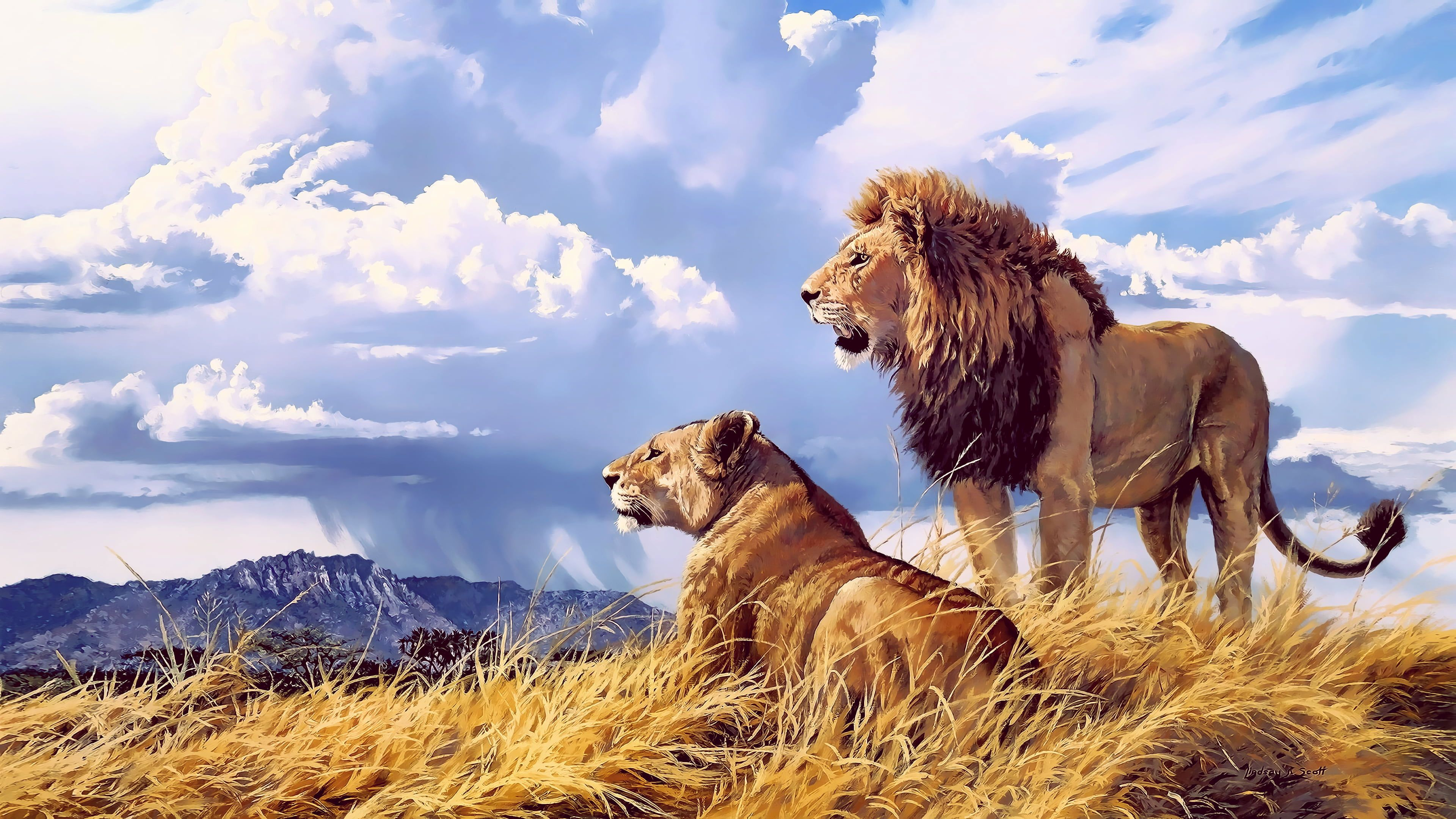 Lion And Lioness Wallpaper Animals Artwork Nature Big Cats Clouds Lion Hd Wallpaper Wild Animal Wallpaper Lion Images