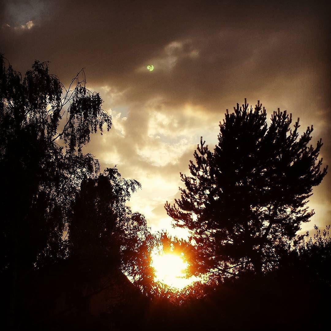 Sun goes down!  #sonnenuntergang #sunset #sonne #sun #afternoon #Bäume #trees #wunderful #wunderschön #picture #instalike #photobyme #ilikeit #samsungs4 #instapic #pirna #saxony #sachsen by m.w.photogra