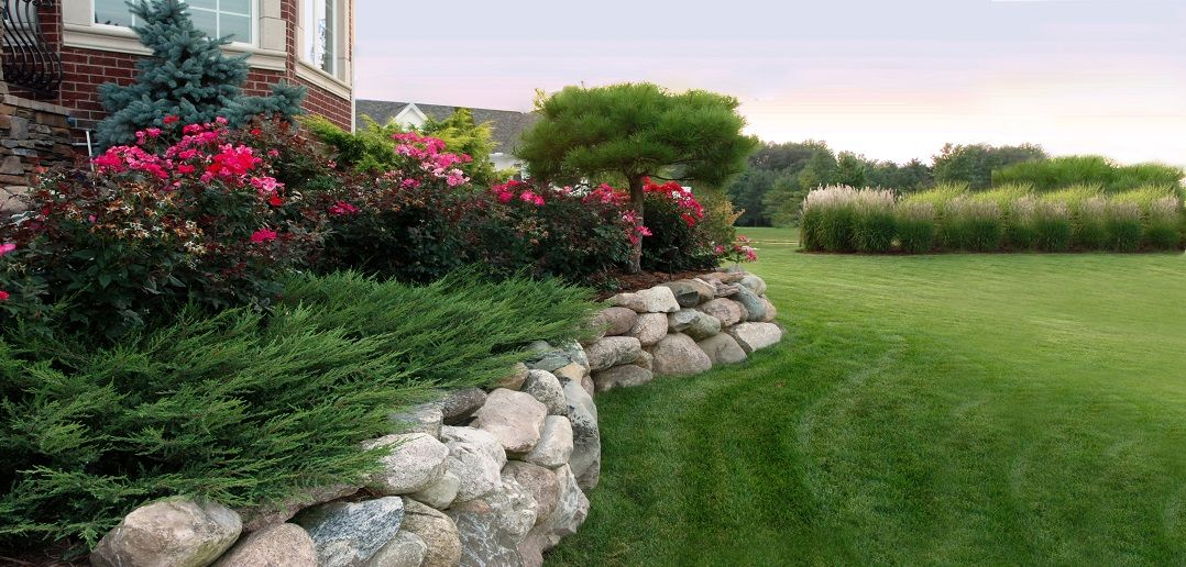 The services of landscaping and lawn care by professionals