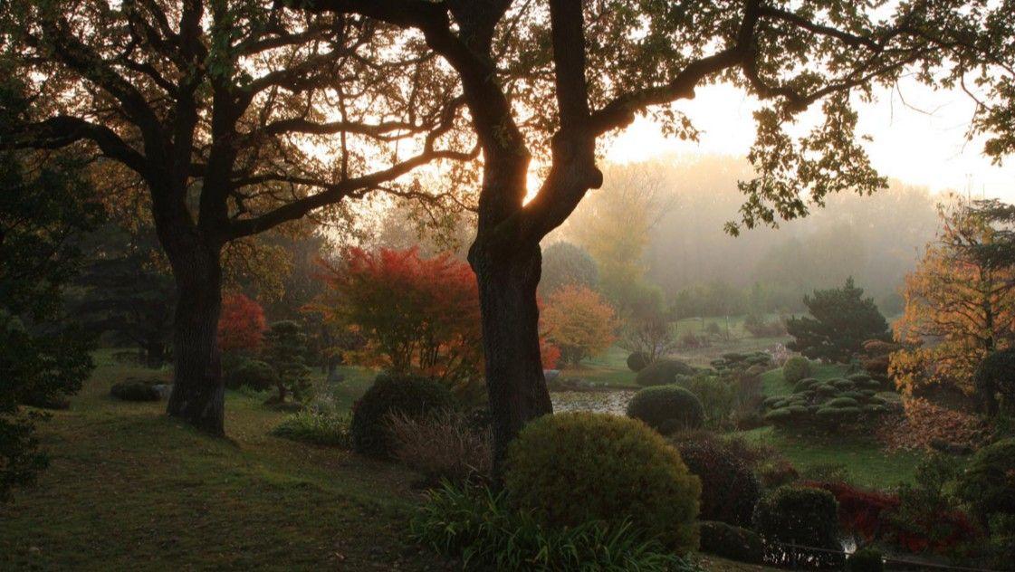 Le jardin zen d erik borja beaumont monteux dr me as autumn colors fall pinterest - Beaumont monteux jardin zen ...