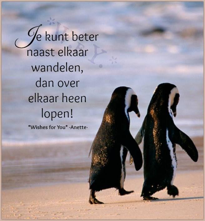 Citaten Over Wandelen : Quot je kunt beter naast elkaar wandelen dan over heen