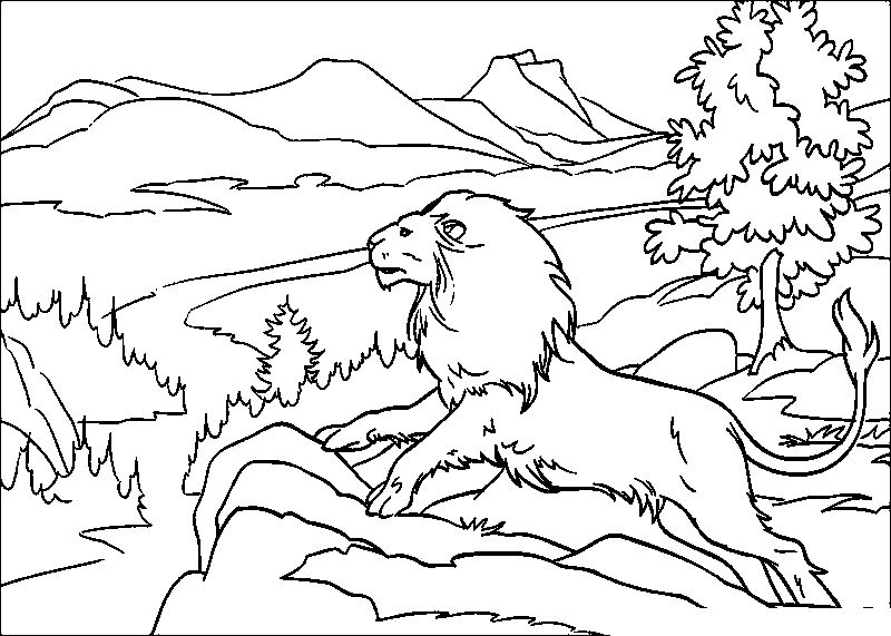 Chronicles Of Narnia Cool Aslan | Chronicles Of Narnia Coloring ...