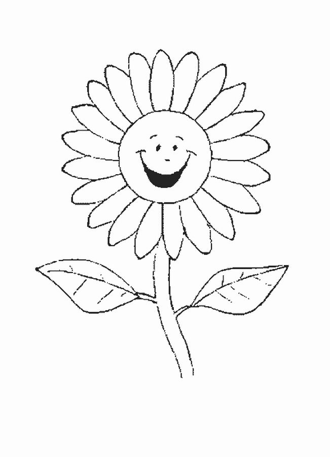 sunfolwercoloringpageskidsjpg 651900 Colouring Templates