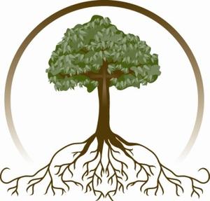 tree roots clip art branding design type pinterest clip art rh pinterest ie tree roots clip art oak tree roots clip art