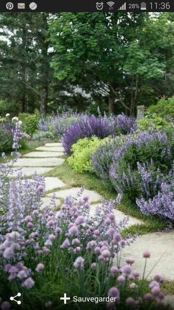 allée de jardin fleurie | Bordures de jardin | Landscaping shrubs ...