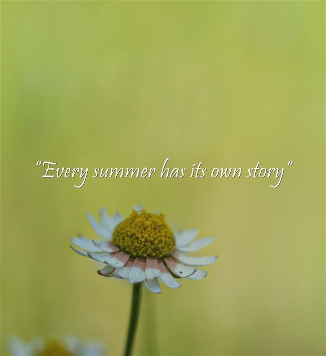 #Quoteoftheday: U201cEvery Summer Has Its Own Storyu201d  Wishing Everyone A Great  #weekend!