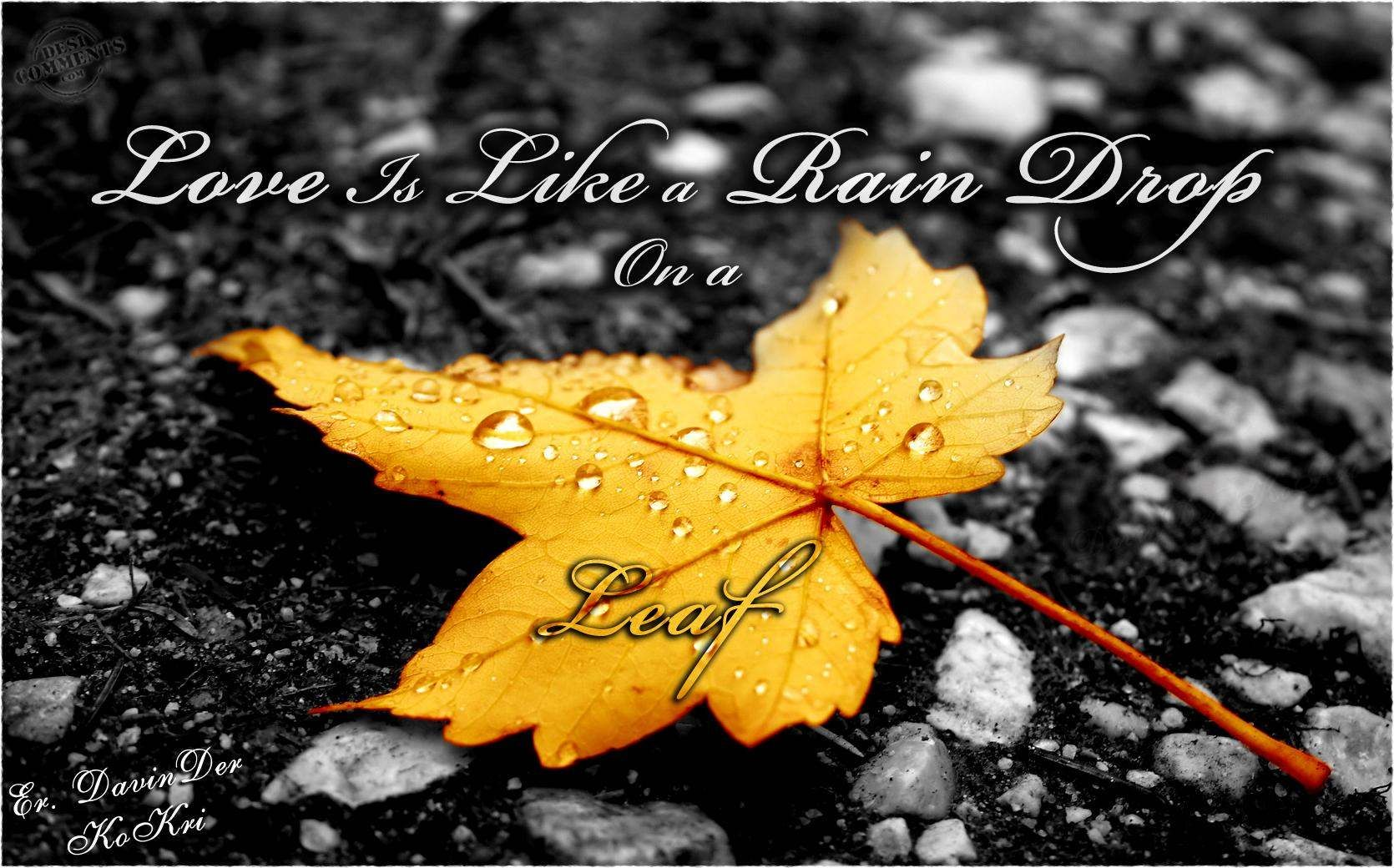Image Result For Rainy Images With Quotes Favourites Love Rain