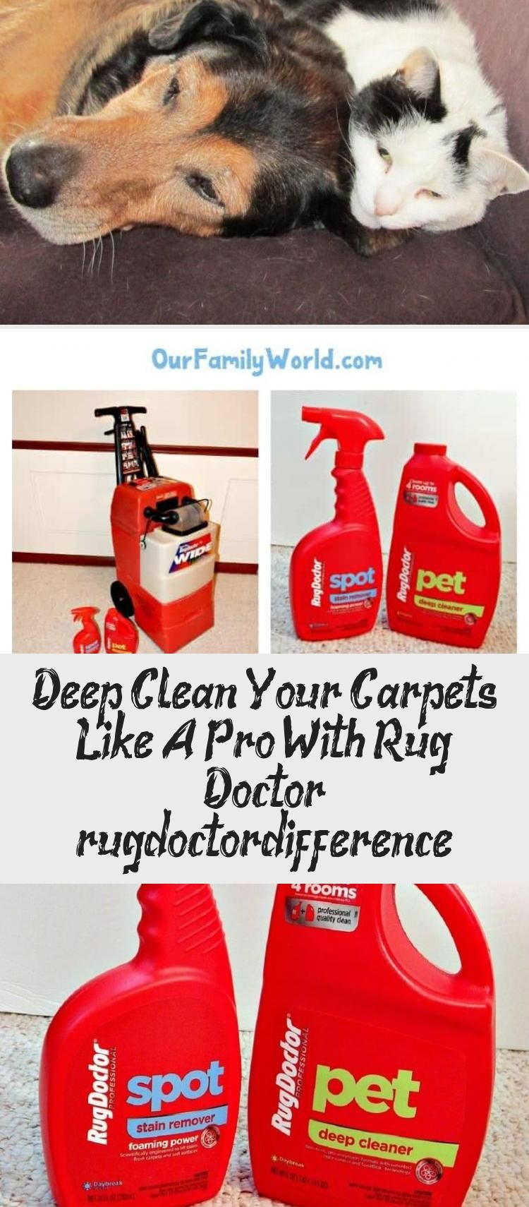 Deep Clean Your Carpets Like A Pro With Rug Doctor Rugdoctordifference In 2020 Rug Doctor Deep Cleaning Carpet Cleaning By Hand