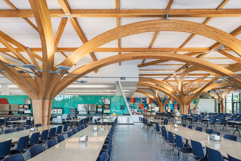 zas architects u0026 39  canadian military dining hall features tree