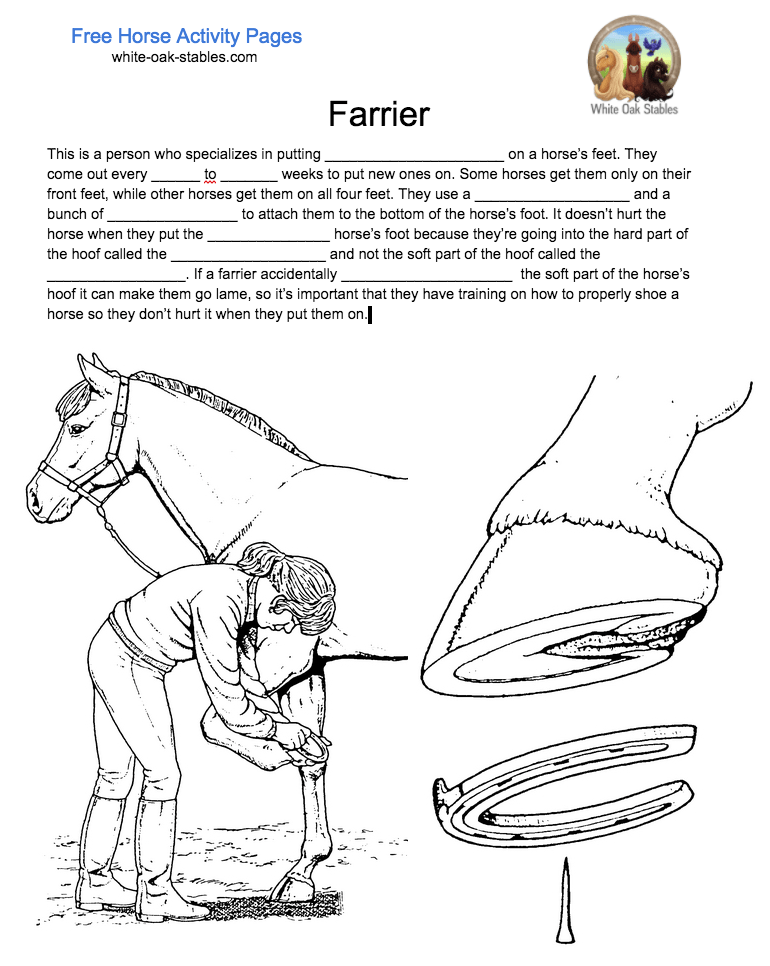 Farrier Fill In The Blanks Activity Page Coloring Book