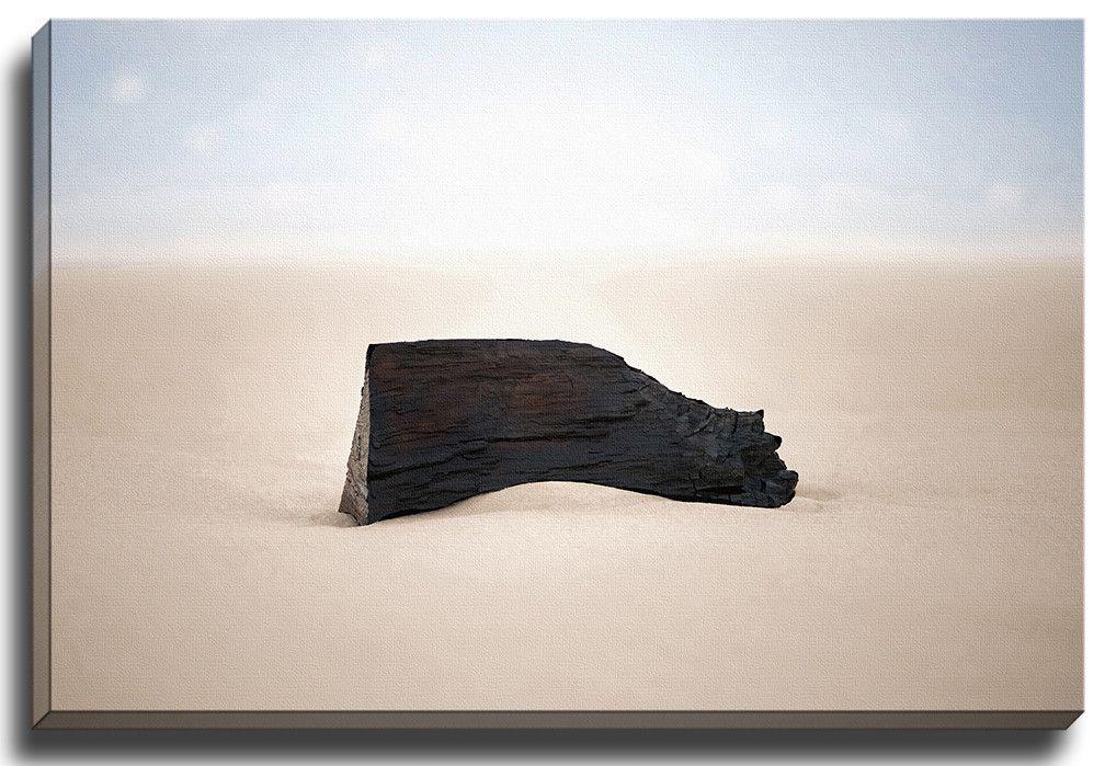 Sandalwood by Terri Ellis Photographic Print on Wrapped Canvas