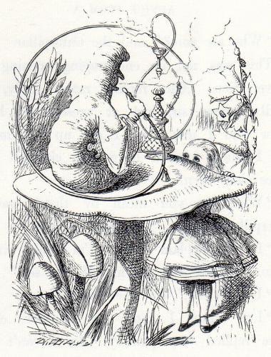 Looking in Wonderland: Sir John Tenniel\'s Illustrations to the Alice ...
