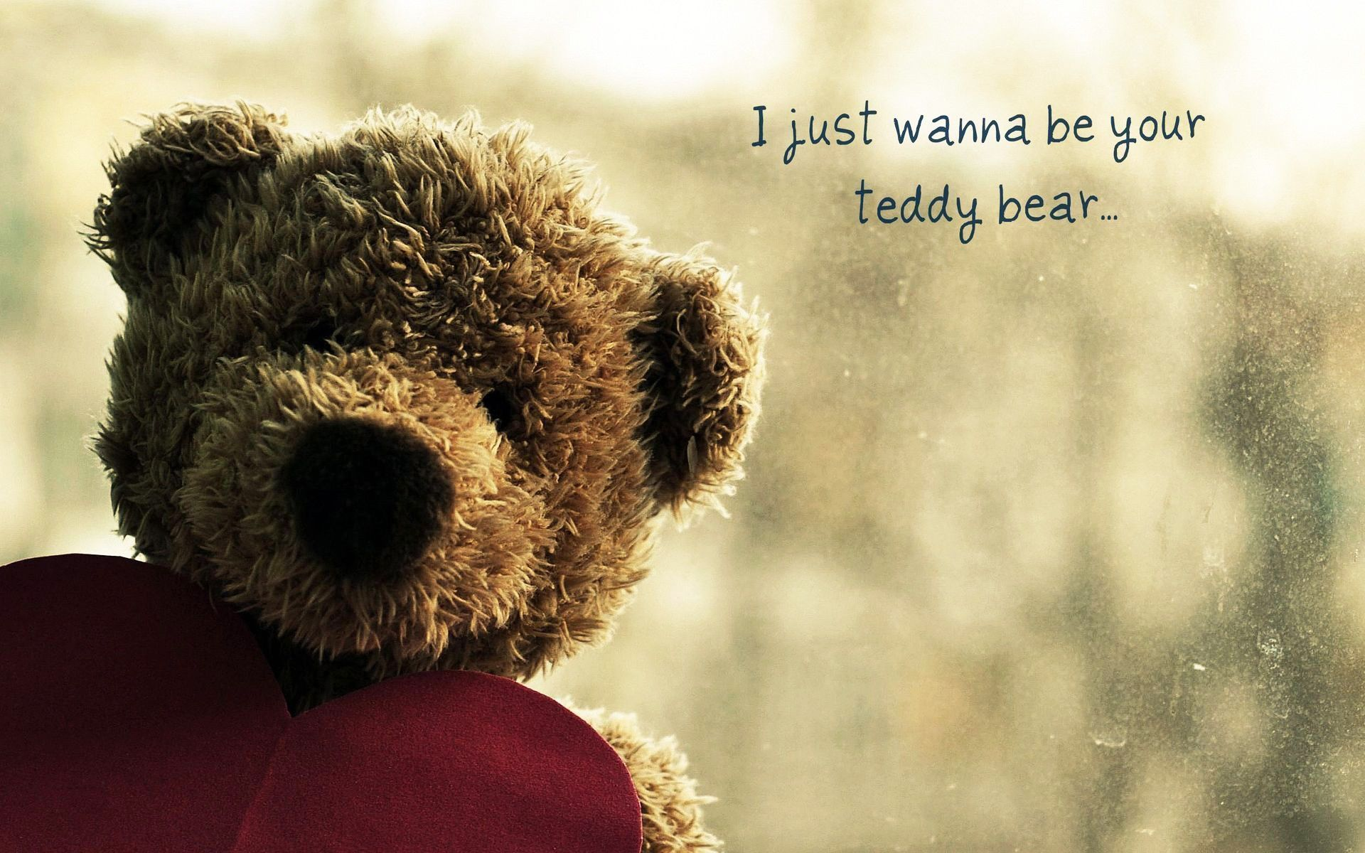 Teddy Bear Cute Funny Wallpaper Download All Things Are Bright And