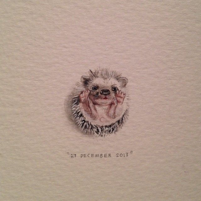 Day 361 : Baby hedgehog (for Rowan and Syd). 18 x 19 mm. #365paintingsforants #miniature #watercolor #hedgehog #baby