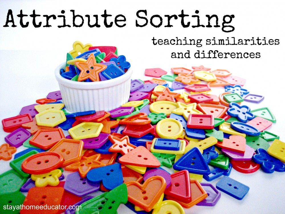 attribute sorting teaching similiarities and differences preschool activities preschool. Black Bedroom Furniture Sets. Home Design Ideas