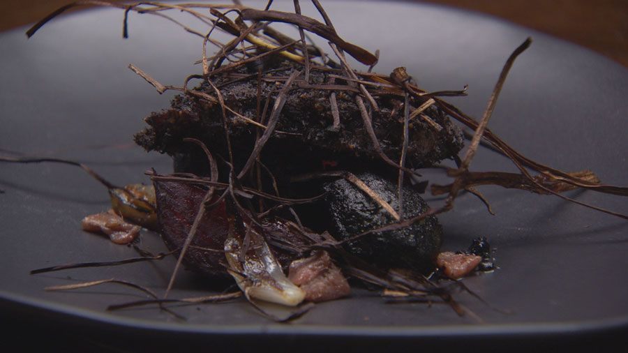 Campfire by Ben Macdonald on Masterchef Australia Official recipe