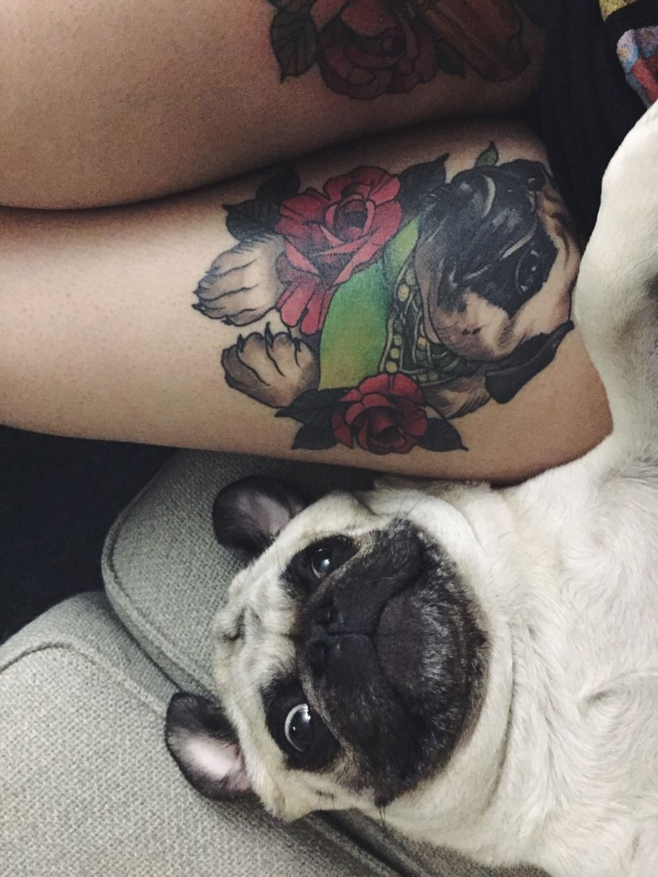 Homer Jay Pug Mom Got A Tattoo Of Me By Sean Gillespie Pugs