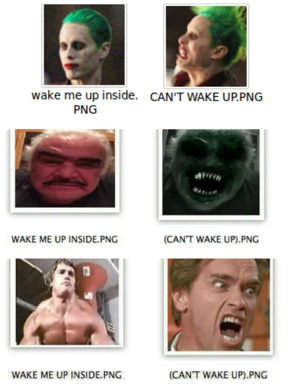 Compilation of favorite wake me up inside memes | Memes