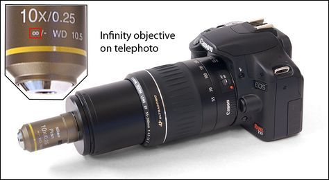 Hooking a microscope objective to DSLR camera (3) The Nikon