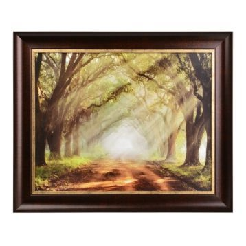 Evergreen Plantation Framed Art Print | Interiors